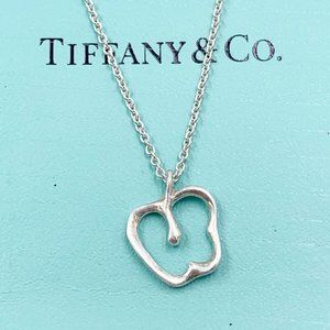 Authentic Tiffany & Co Silver Apple Necklace